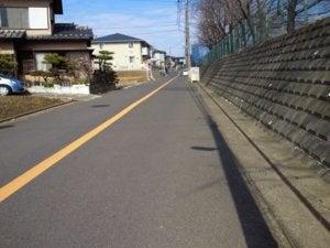 松戸の「21世紀の森と広場」近くの道