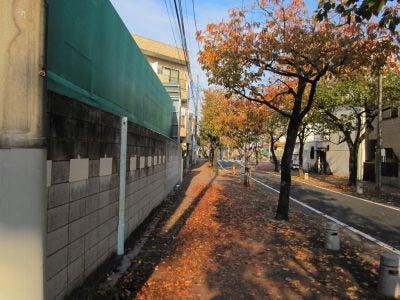 住宅街はすっかり秋